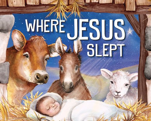 Where Jesus Slept Book Review
